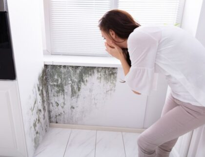 Tips To Create an Allergy-Free Home